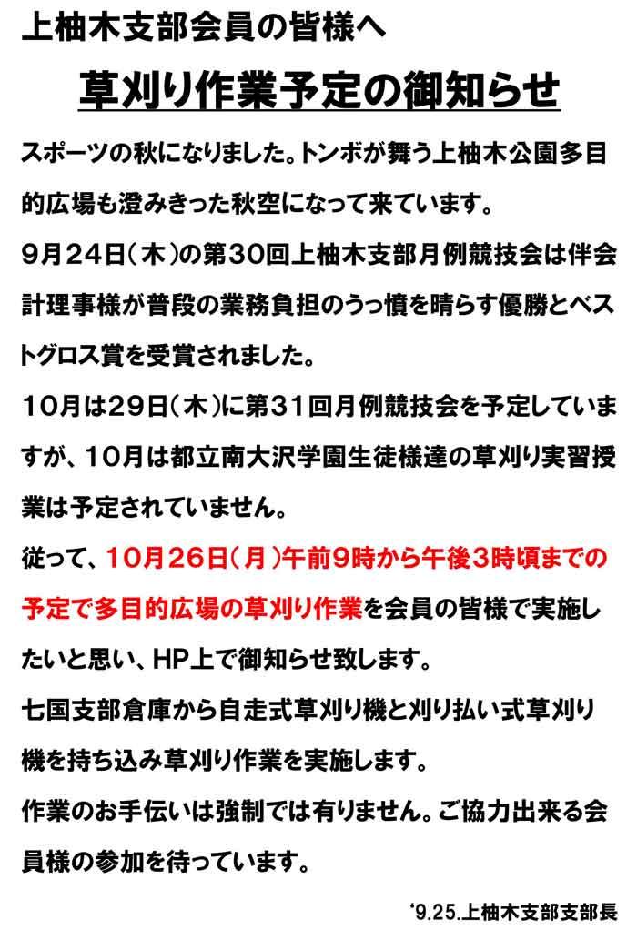 Kamiyugi-Shibakari10026