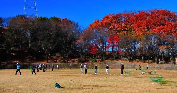 青空と紅葉の多目的広場